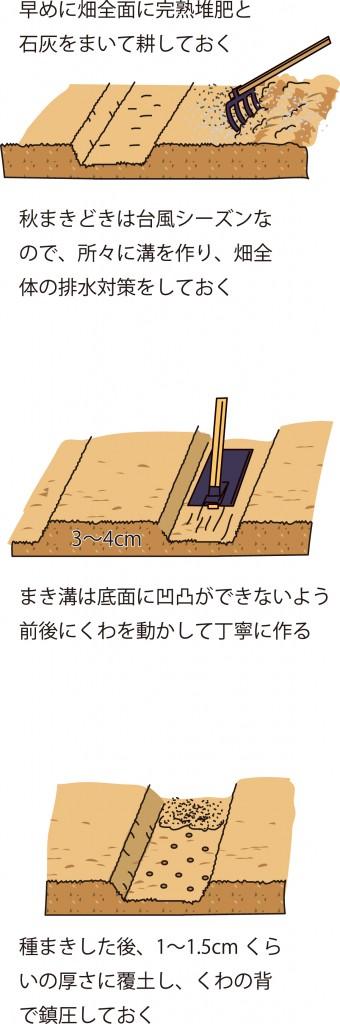 p25_01saien_4c