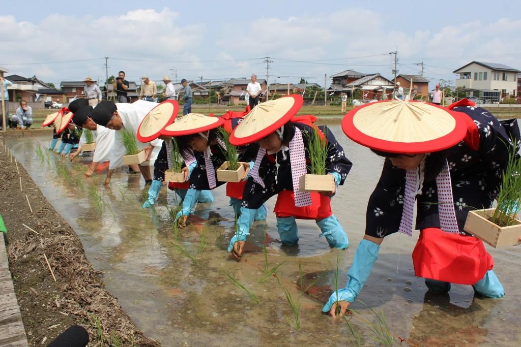 柳川地域良質米生産支援協議会水稲御田植式