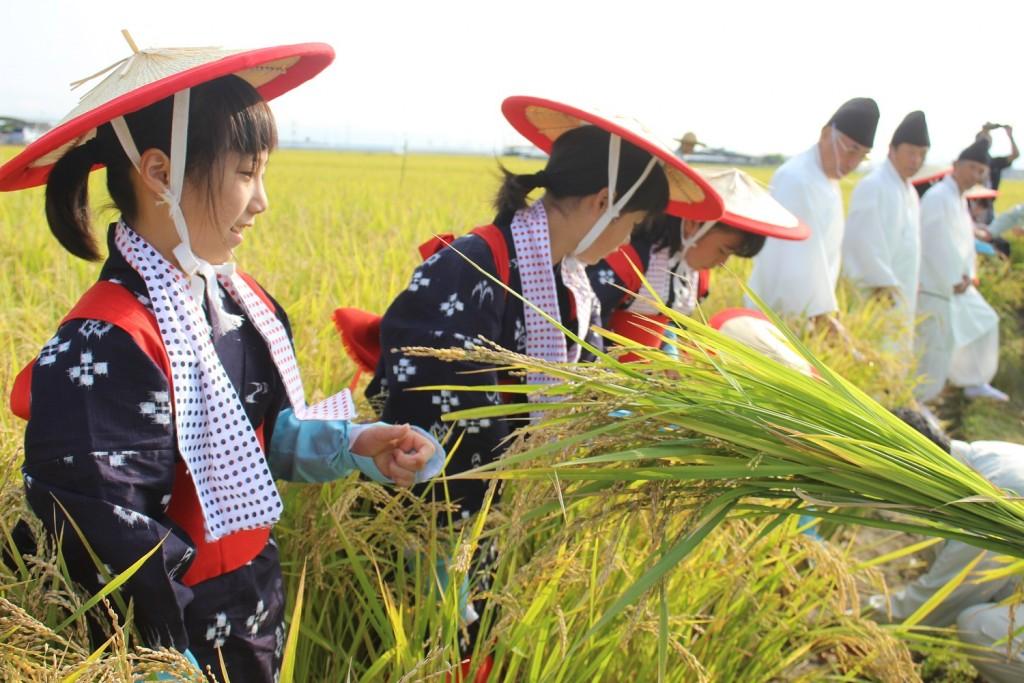 柳川地域良質米生産支援協議会水稲・粟抜穂祭 ①