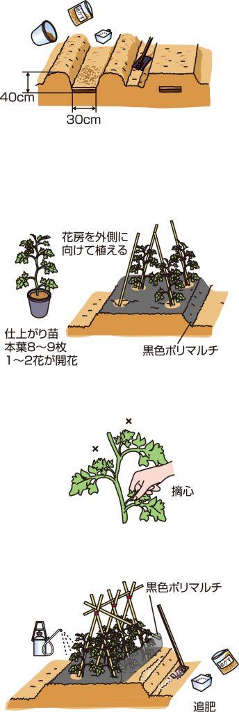 p26_04saien_4c